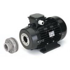 Электродвигатель 5,5 кВт с муфтой (NICOLINI)